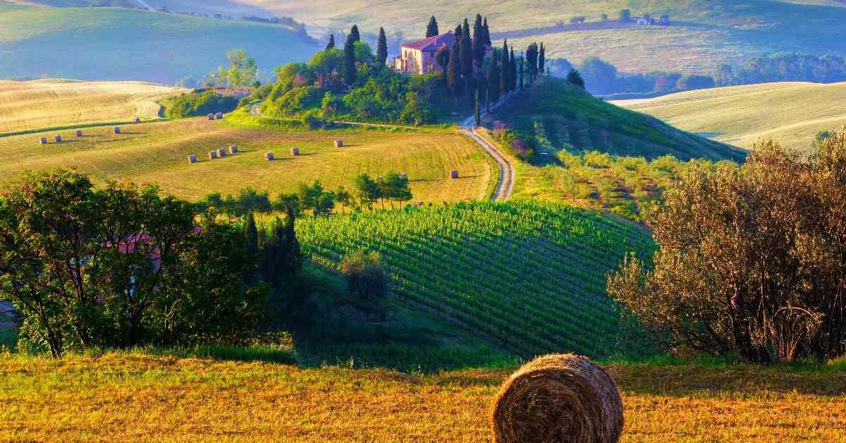 Landscapes Tuscany